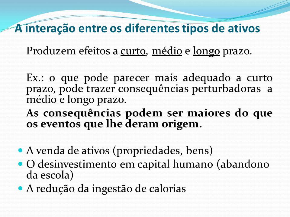 A interação entre os diferentes tipos de ativos Produzem efeitos a curto, médio e longo prazo.