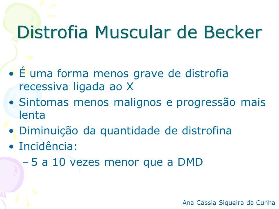 Distrofia Muscular de Becker É uma forma menos grave de distrofia recessiva ligada ao X Sintomas menos malignos e progressão mais lenta Diminuição da