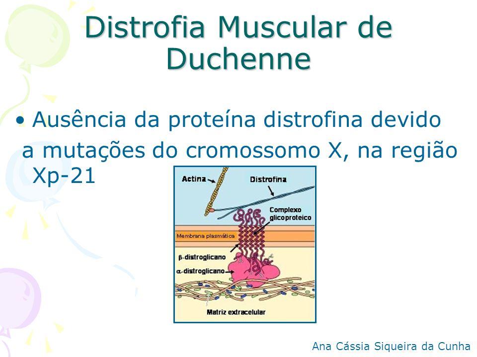 Distrofia Muscular de Duchenne Ausência da proteína distrofina devido a mutações do cromossomo X, na região Xp-21 Ana Cássia Siqueira da Cunha