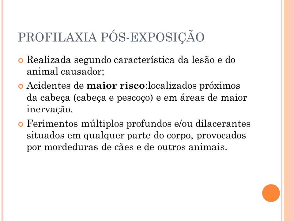 PROFILAXIA PÓS-EXPOSIÇÃO Realizada segundo característica da lesão e do animal causador; Acidentes de maior risco :localizados próximos da cabeça (cab