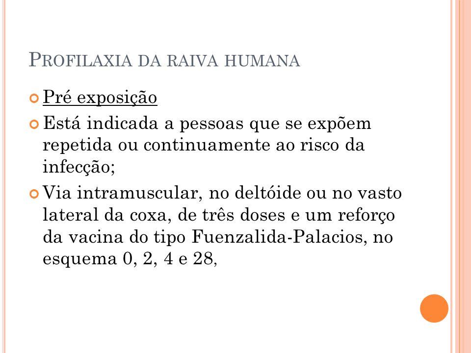 P ROFILAXIA DA RAIVA HUMANA Pré exposição Está indicada a pessoas que se expõem repetida ou continuamente ao risco da infecção; Via intramuscular, no