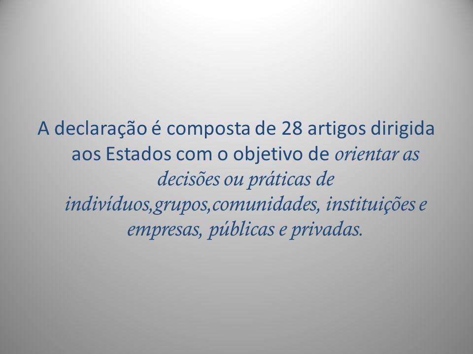 A declaração é composta de 28 artigos dirigida aos Estados com o objetivo de orientar as decisões ou práticas de indivíduos,grupos,comunidades, instit