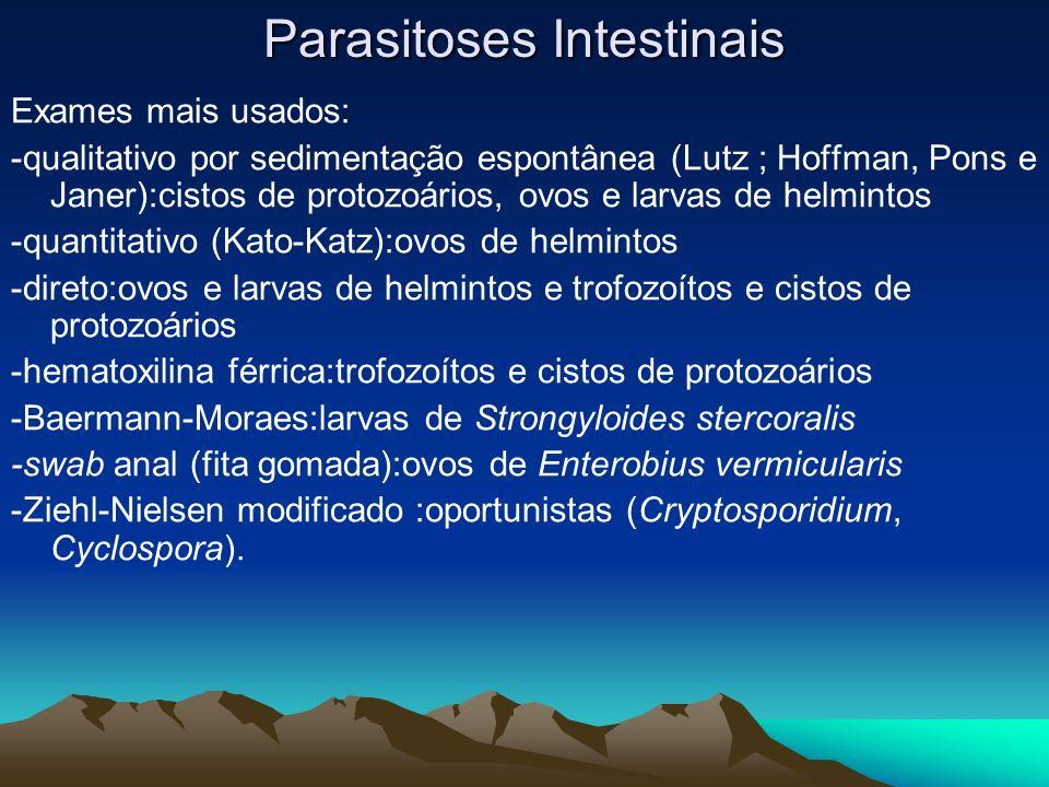 Parasitoses Intestinais Exames mais usados: -qualitativo por sedimentação espontânea (Lutz ; Hoffman, Pons e Janer):cistos de protozoários, ovos e lar