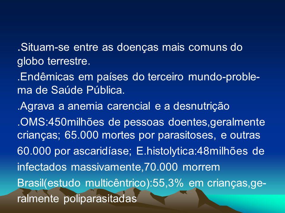 . Situam-se entre as doenças mais comuns do globo terrestre..Endêmicas em países do terceiro mundo-proble- ma de Saúde Pública..Agrava a anemia carenc