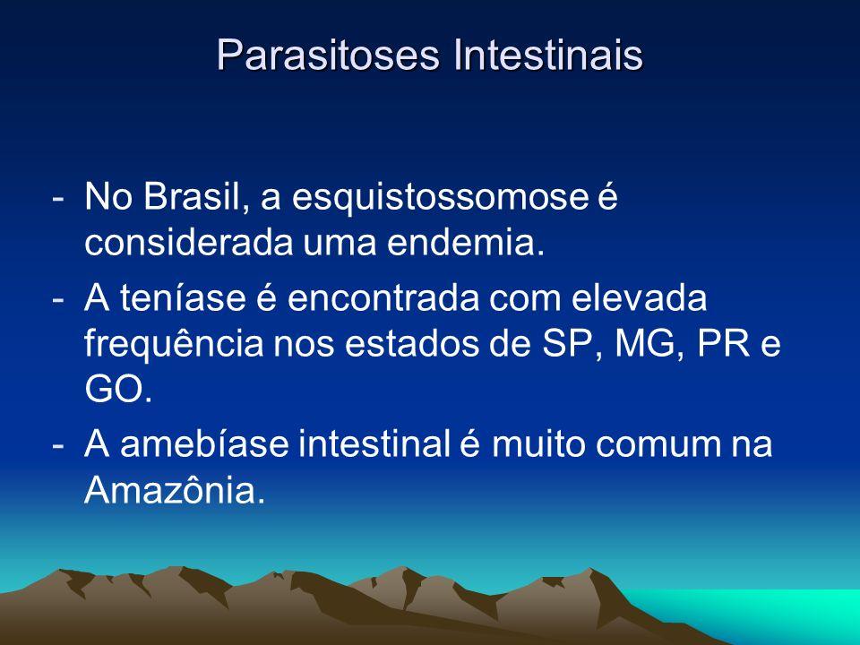 Parasitoses Intestinais -No Brasil, a esquistossomose é considerada uma endemia. -A teníase é encontrada com elevada frequência nos estados de SP, MG,