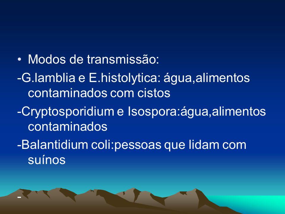 Modos de transmissão: -G.lamblia e E.histolytica: água,alimentos contaminados com cistos -Cryptosporidium e Isospora:água,alimentos contaminados -Bala
