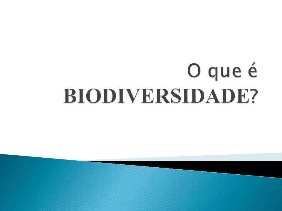 Ramo da Biologia que organiza os seres vivos conforme suas características.