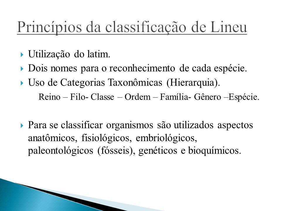 Utilização do latim. Dois nomes para o reconhecimento de cada espécie. Uso de Categorias Taxonômicas (Hierarquia). Reino – Filo- Classe – Ordem – Famí