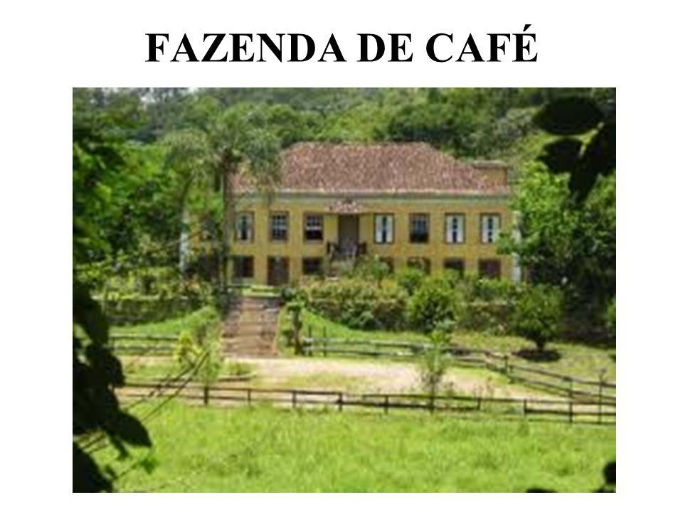 FAZENDA DE CAFÉ