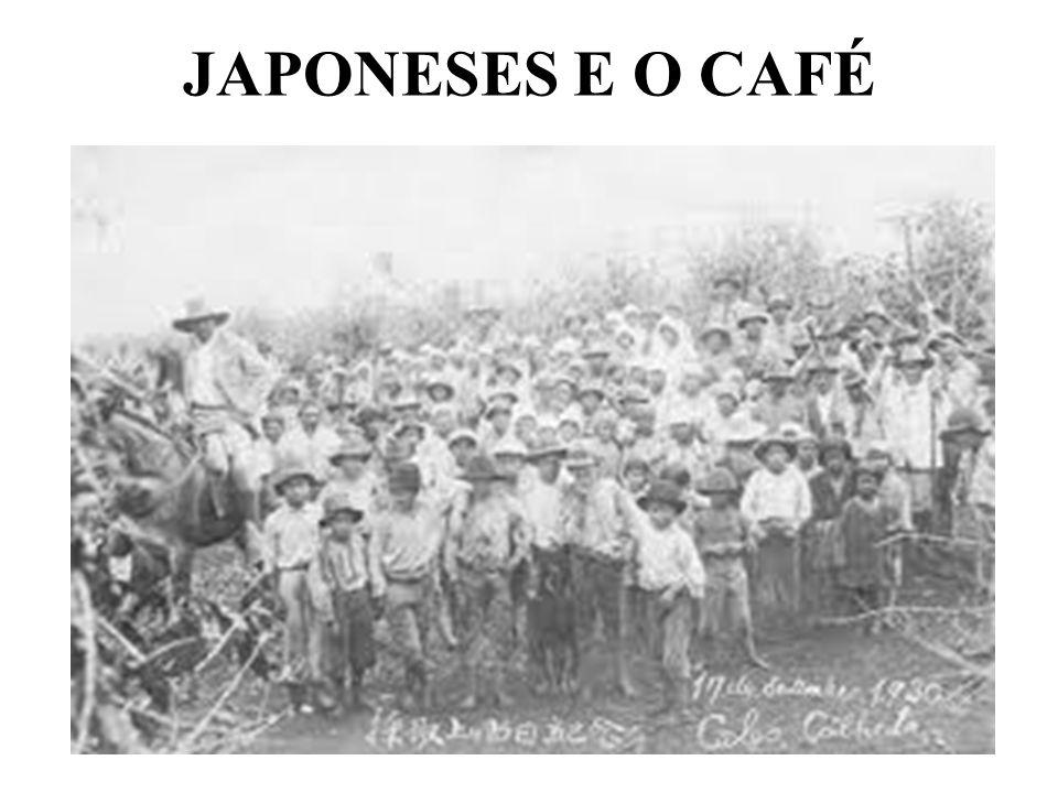 JAPONESES E O CAFÉ