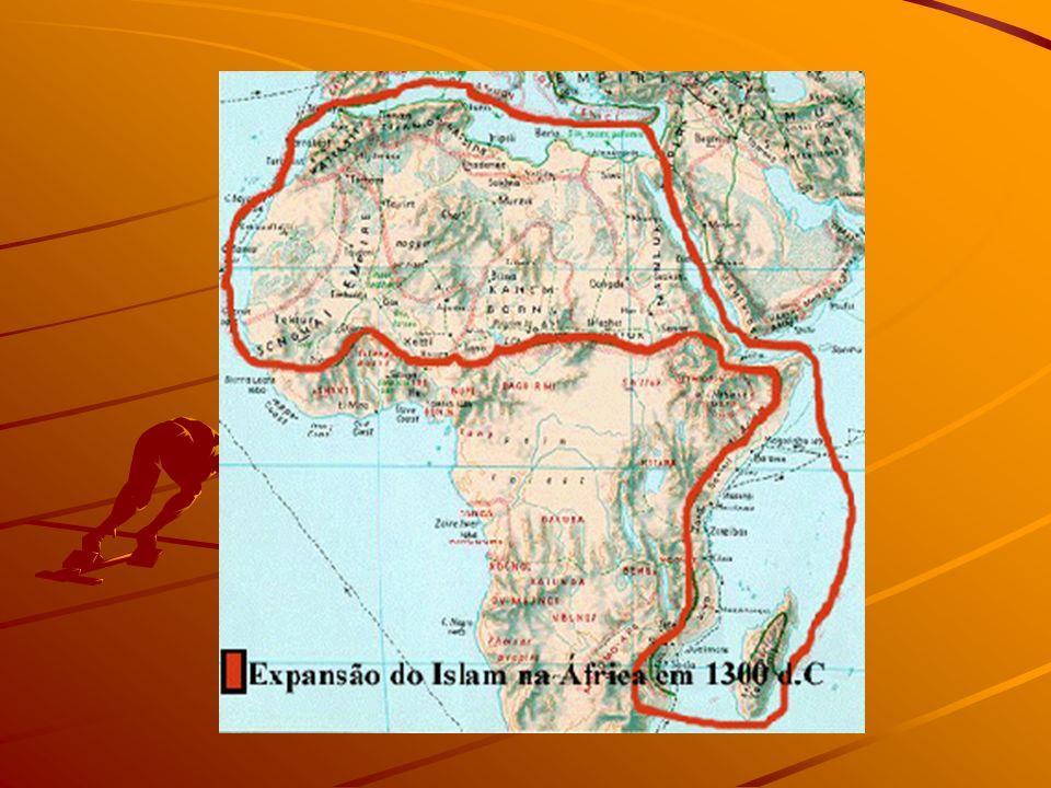 África do Norte – Geografia Física RELEVO : CADEIA DO ATLAS, DESERTO DO SAARA, Planícies e Vales; RELEVO : CADEIA DO ATLAS, DESERTO DO SAARA, Planícies e Vales; HIDROGRAFIA : RIO NILO – RIO DE INTEGRAÇÃO CONTINENTAL, OÁSIS DISTRIBUÍDOS AO LONGO DO DESERTO HIDROGRAFIA : RIO NILO – RIO DE INTEGRAÇÃO CONTINENTAL, OÁSIS DISTRIBUÍDOS AO LONGO DO DESERTO - CLIMA: SEMI-ÁRIDO, SUBTROPICAL TIPO MEDITERRÂNEO E DESÉRTICO; -VEGETAÇÃO – DESÉRTICA (XERÓFILAS),ESTEPES E MEDITERRÂNEA