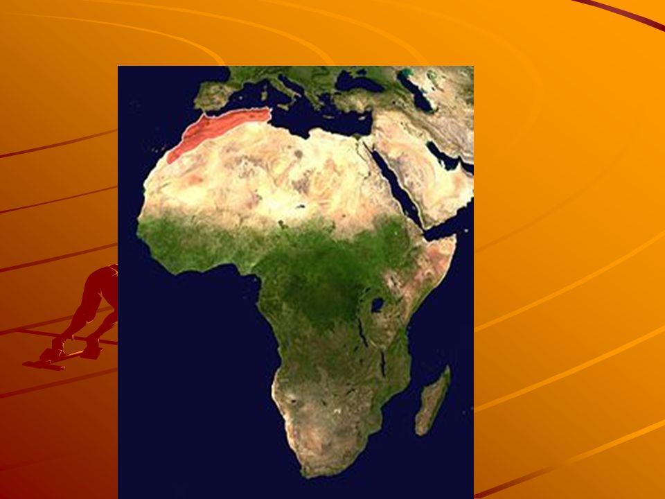 Rio Nilo - Cairo – capital do Egito, está a margem do Nilo.