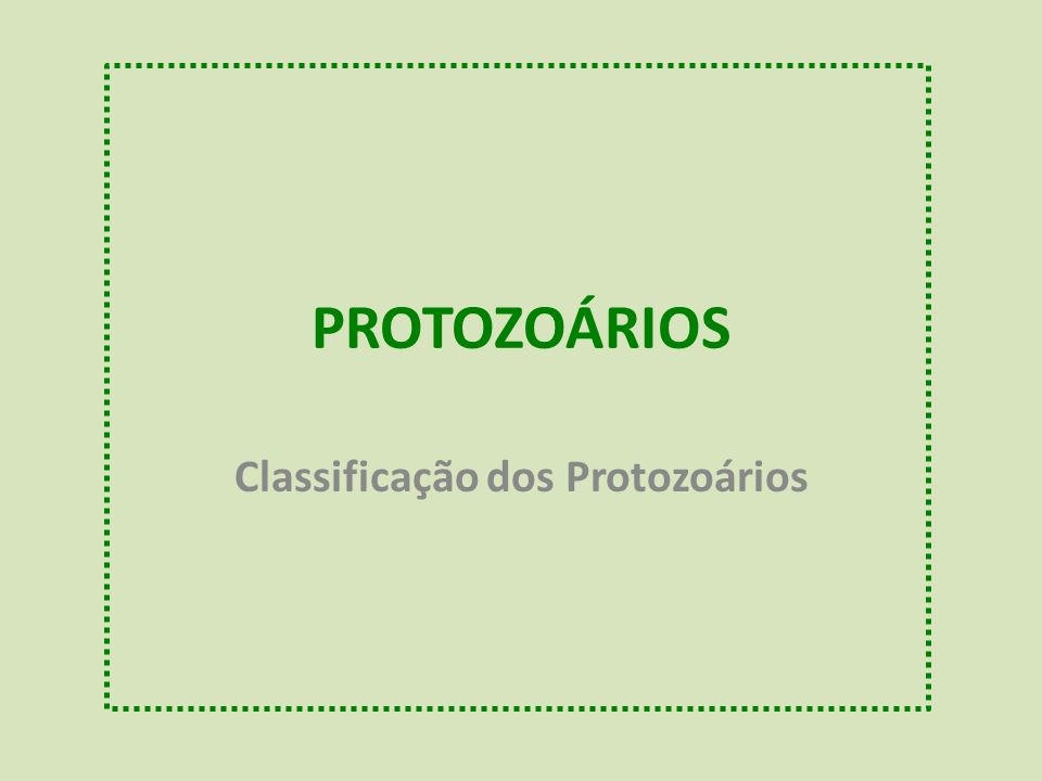 PROTOZOÁRIOS Classificação dos Protozoários