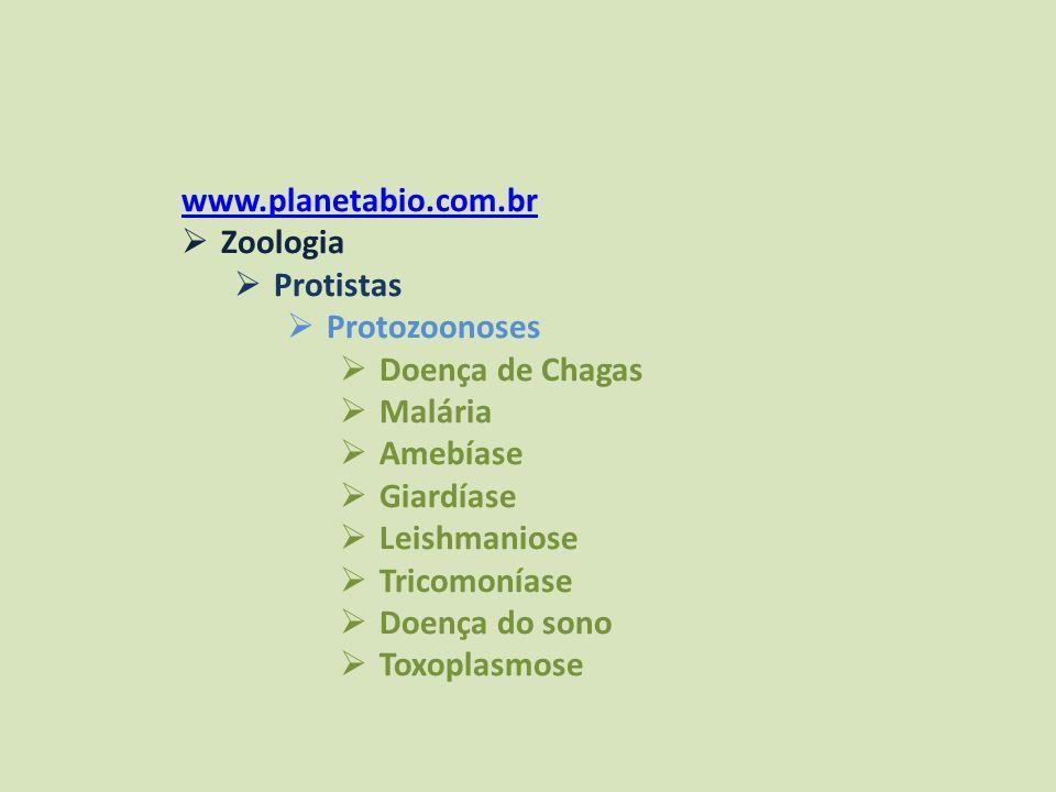 www.planetabio.com.br Zoologia Protistas Protozoonoses Doença de Chagas Malária Amebíase Giardíase Leishmaniose Tricomoníase Doença do sono Toxoplasmo