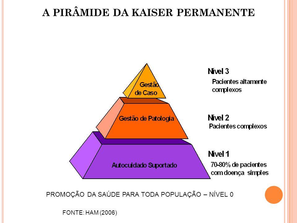 A PIRÂMIDE DA KAISER PERMANENTE FONTE: HAM (2006) PROMOÇÃO DA SAÚDE PARA TODA POPULAÇÃO – NÍVEL 0
