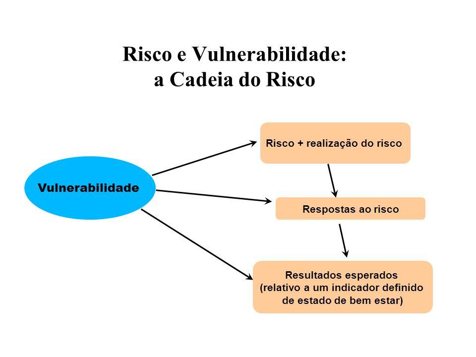 Risco e Vulnerabilidade: a Cadeia do Risco Vulnerabilidade Risco + realização do risco Respostas ao risco Resultados esperados (relativo a um indicador definido de estado de bem estar)