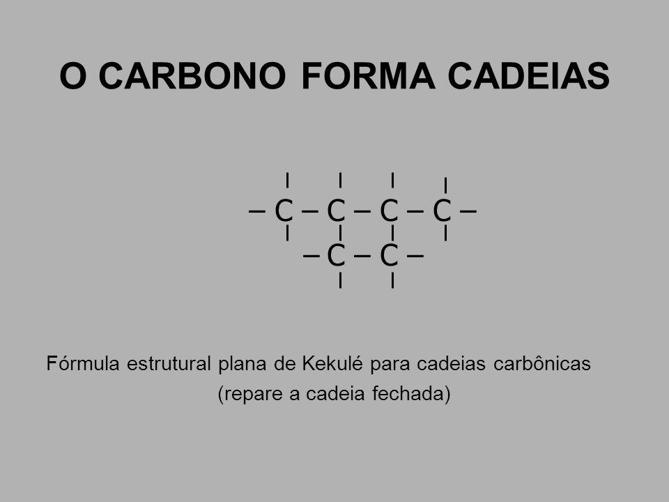 O CARBONO FORMA CADEIAS – C – C – C – C – – C – C – Fórmula estrutural plana de Kekulé para cadeias carbônicas (repare a cadeia fechada)