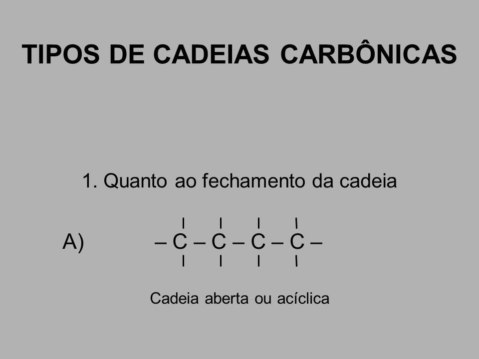 TIPOS DE CADEIAS CARBÔNICAS 1. Quanto ao fechamento da cadeia A) – C – C – C – C – Cadeia aberta ou acíclica