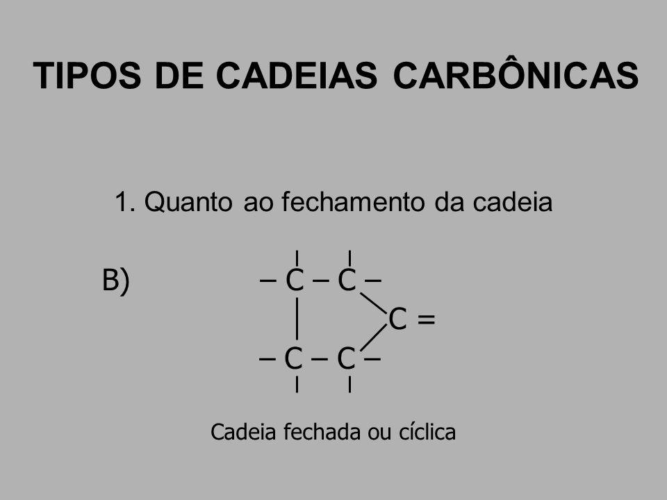 TIPOS DE CADEIAS CARBÔNICAS 1. Quanto ao fechamento da cadeia B) – C – C – C = – C – C – Cadeia fechada ou cíclica