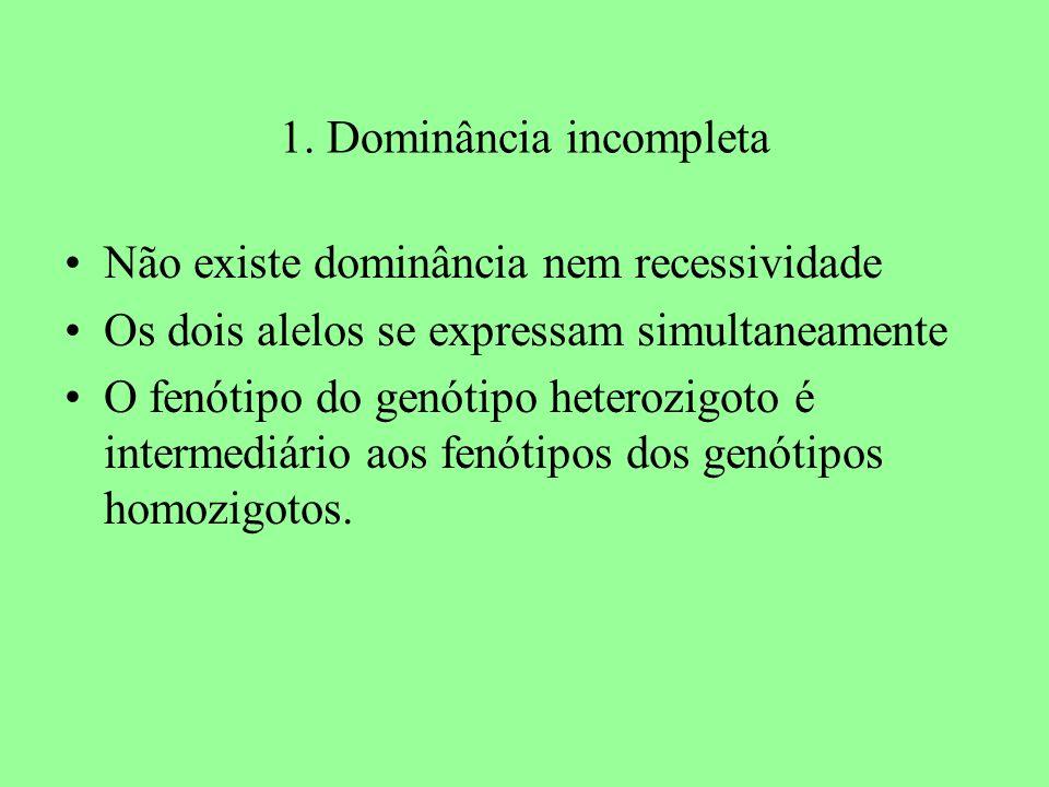 1. Dominância incompleta Não existe dominância nem recessividade Os dois alelos se expressam simultaneamente O fenótipo do genótipo heterozigoto é int