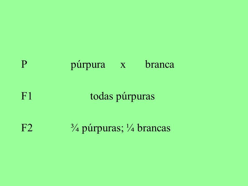 P púrpuraxbranca F1 todas púrpuras F2¾ púrpuras; ¼ brancas