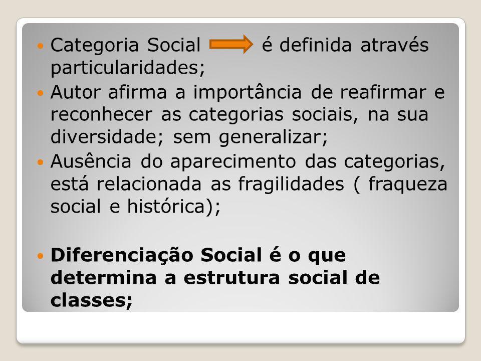 Categoria Social é definida através particularidades; Autor afirma a importância de reafirmar e reconhecer as categorias sociais, na sua diversidade;