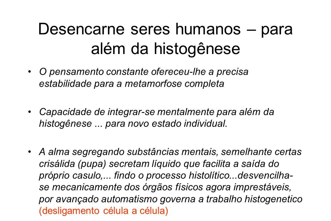 Desencarne seres humanos – para além da histogênese O pensamento constante ofereceu-lhe a precisa estabilidade para a metamorfose completa Capacidade