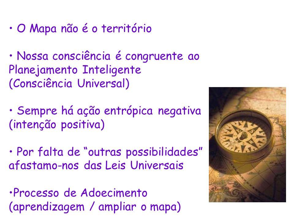 O Mapa não é o território Nossa consciência é congruente ao Planejamento Inteligente (Consciência Universal) Sempre há ação entrópica negativa (intenç