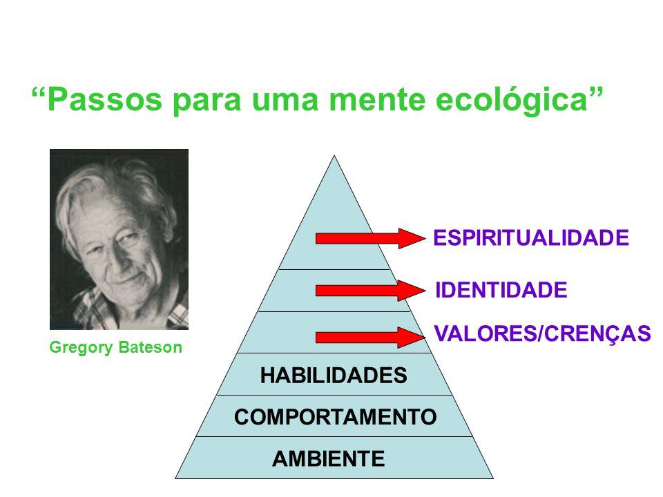 Passos para uma mente ecológica AMBIENTE COMPORTAMENTO HABILIDADES VALORES/CRENÇAS IDENTIDADE ESPIRITUALIDADE Gregory Bateson