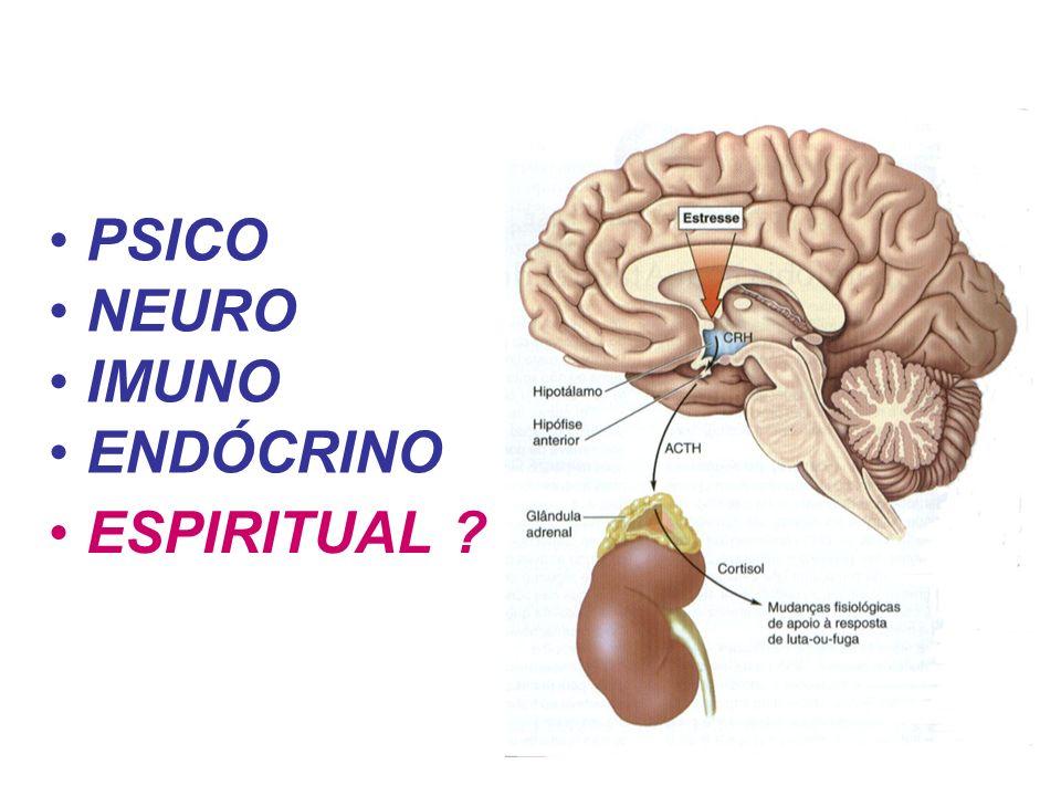 PSICO NEURO IMUNO ENDÓCRINO ESPIRITUAL ?