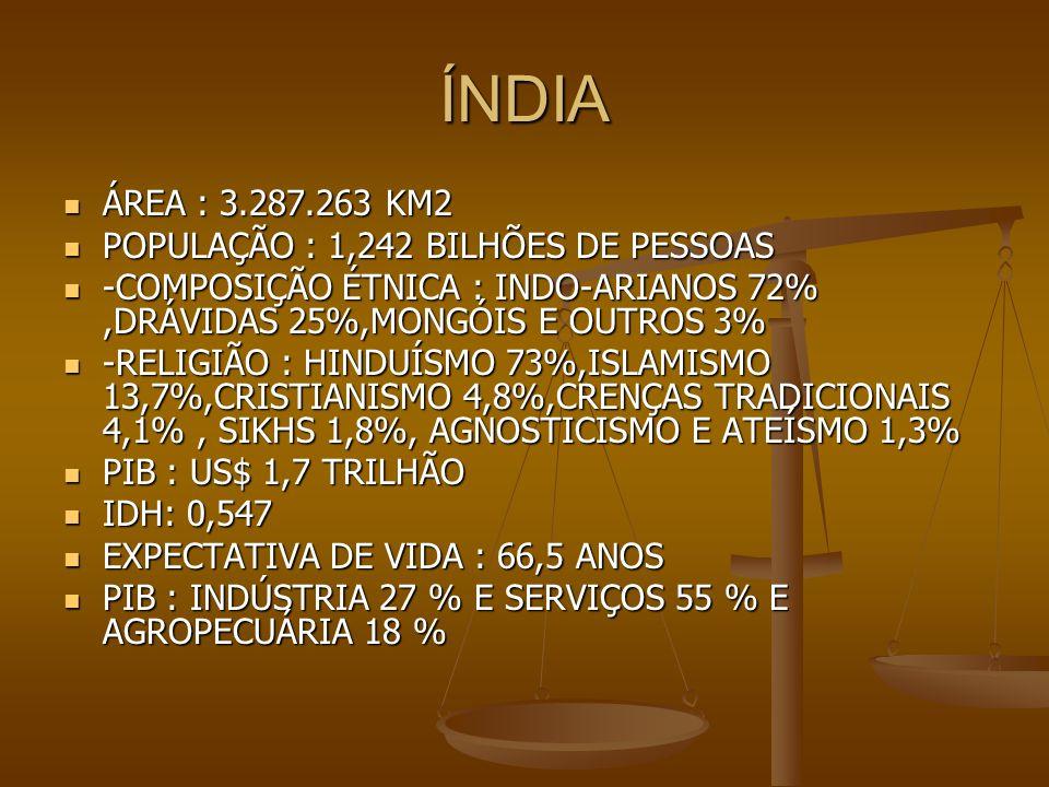 ÍNDIA ÁREA : 3.287.263 KM2 ÁREA : 3.287.263 KM2 POPULAÇÃO : 1,242 BILHÕES DE PESSOAS POPULAÇÃO : 1,242 BILHÕES DE PESSOAS -COMPOSIÇÃO ÉTNICA : INDO-AR