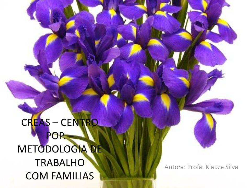 CREAS – CENTRO POP. – METODOLOGIA DE TRABALHO COM FAMILIAS Autora: Profa. Klauze Silva