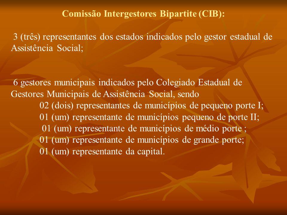 Comissão Intergestores Bipartite (CIB): 3 (três) representantes dos estados indicados pelo gestor estadual de Assistência Social; 6 gestores municipai