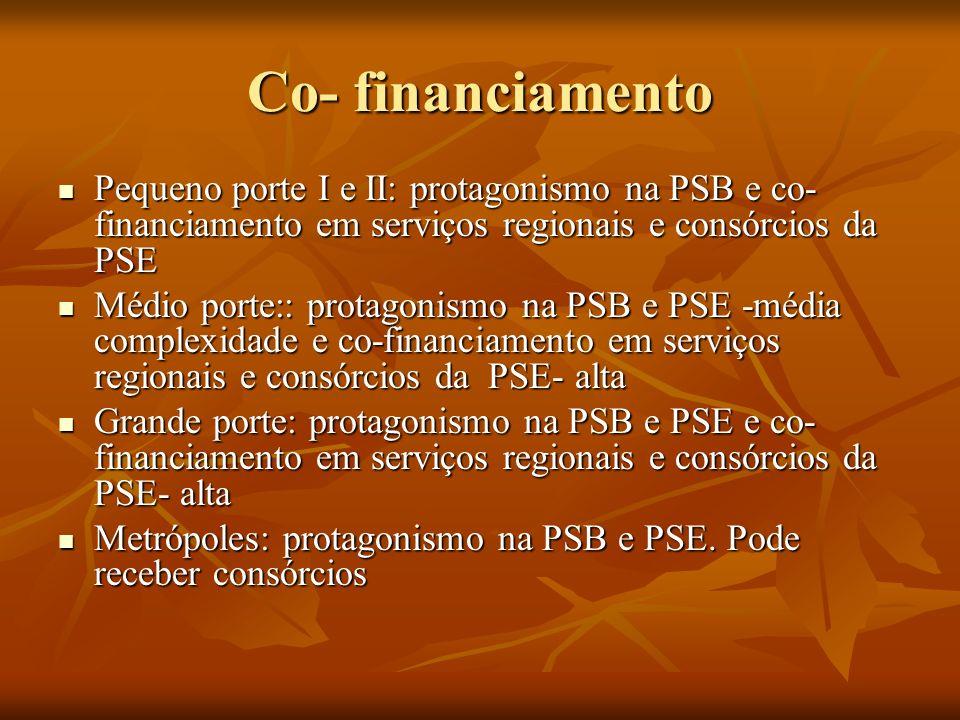 Co- financiamento Pequeno porte I e II: protagonismo na PSB e co- financiamento em serviços regionais e consórcios da PSE Pequeno porte I e II: protagonismo na PSB e co- financiamento em serviços regionais e consórcios da PSE Médio porte:: protagonismo na PSB e PSE -média complexidade e co-financiamento em serviços regionais e consórcios da PSE- alta Médio porte:: protagonismo na PSB e PSE -média complexidade e co-financiamento em serviços regionais e consórcios da PSE- alta Grande porte: protagonismo na PSB e PSE e co- financiamento em serviços regionais e consórcios da PSE- alta Grande porte: protagonismo na PSB e PSE e co- financiamento em serviços regionais e consórcios da PSE- alta Metrópoles: protagonismo na PSB e PSE.