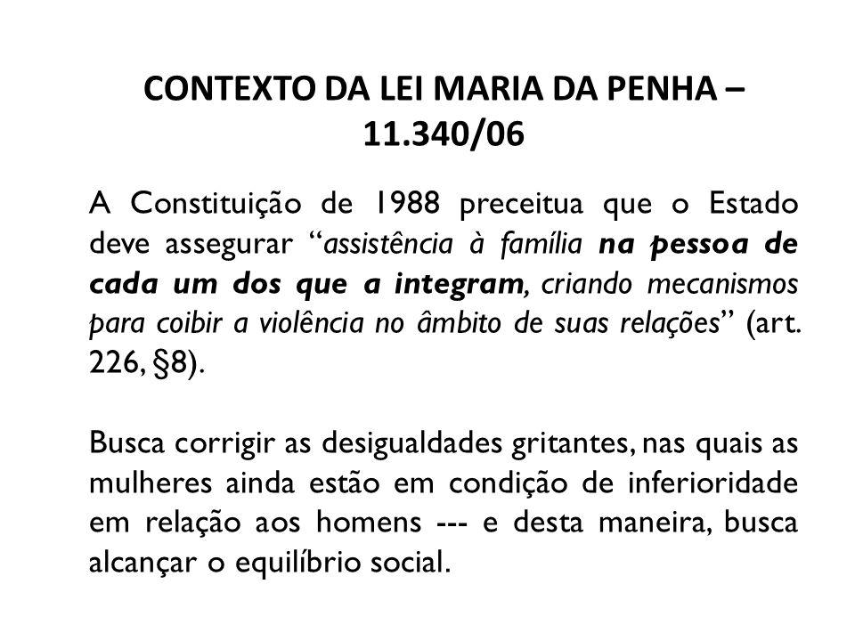 CONTEXTO DA LEI MARIA DA PENHA – 11.340/06 A Constituição de 1988 preceitua que o Estado deve assegurar assistência à família na pessoa de cada um dos