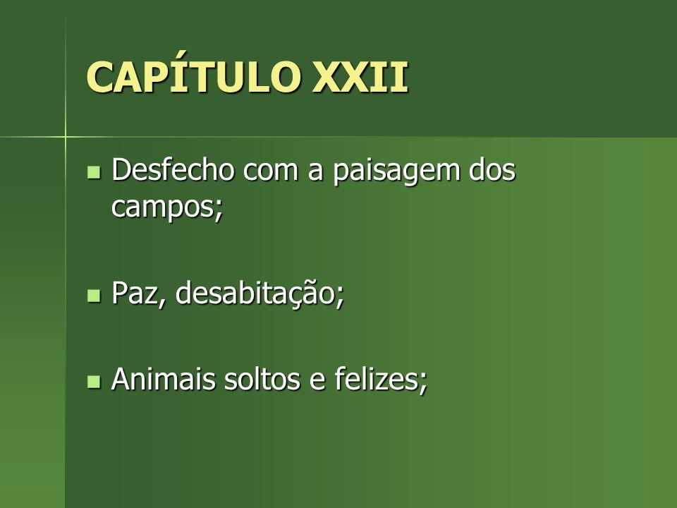 CAPÍTULO XXII Desfecho com a paisagem dos campos; Desfecho com a paisagem dos campos; Paz, desabitação; Paz, desabitação; Animais soltos e felizes; An
