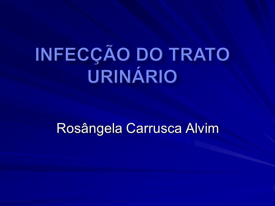 Uropatias Obstrutivas Demandam reconhecimento precoce Passíveis de diagnóstico no período neonatal Terapêutica antimicrobiana erradica- dora seguida de quimioprofilaxia nos surtos de ITU