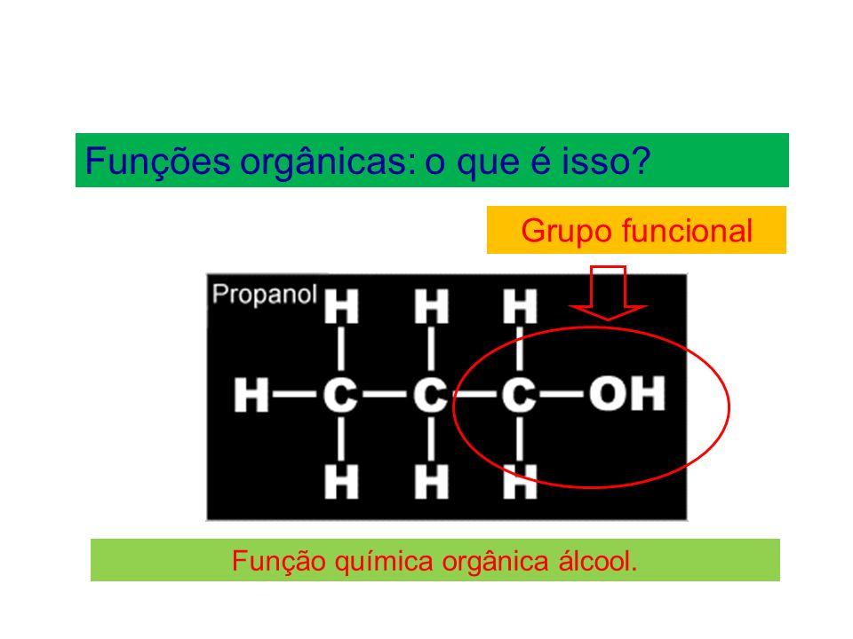 Funções orgânicas: o que é isso.A seguir, destacamos as funções orgânicas mais comuns.