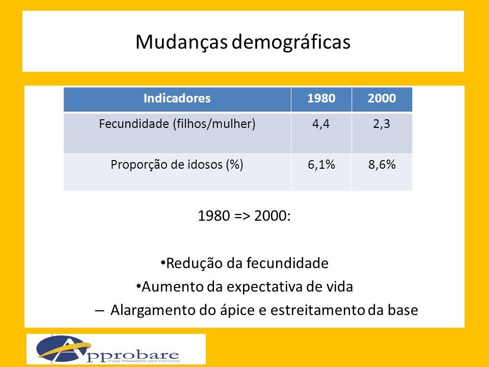 Mudanças demográficas 1980 => 2000: Redução da fecundidade Aumento da expectativa de vida – Alargamento do ápice e estreitamento da base Indicadores19