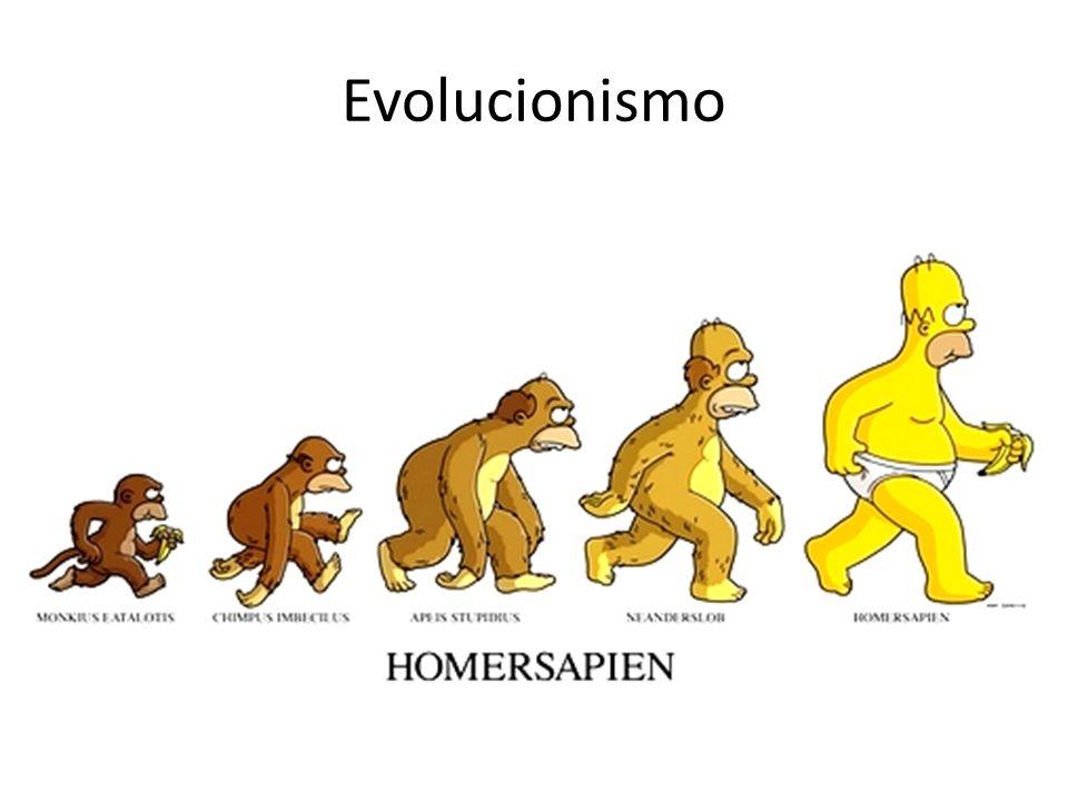 Teoria da Evolução Darwin: Seleção Natural