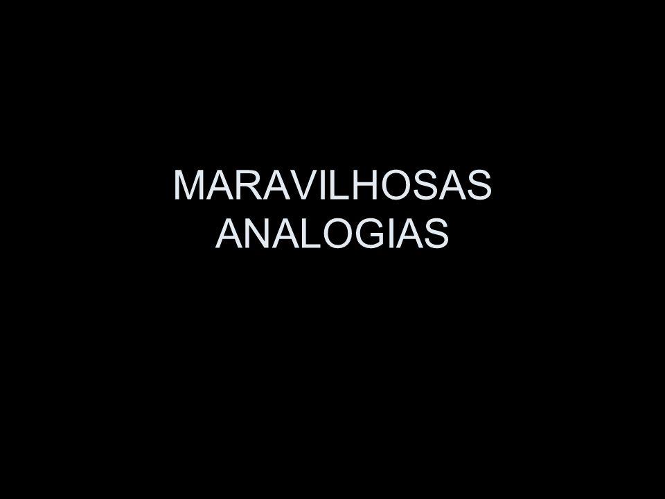 MARAVILHOSAS ANALOGIAS