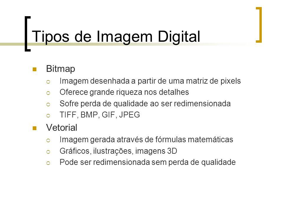 Tipos de Imagem Digital Bitmap Imagem desenhada a partir de uma matriz de pixels Oferece grande riqueza nos detalhes Sofre perda de qualidade ao ser r