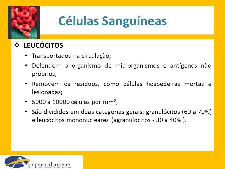 Células Sanguíneas LEUCÓCITOS Transportados na circulação; Defendem o organismo de microrganismos e antígenos não próprios; Removem os resíduos, como