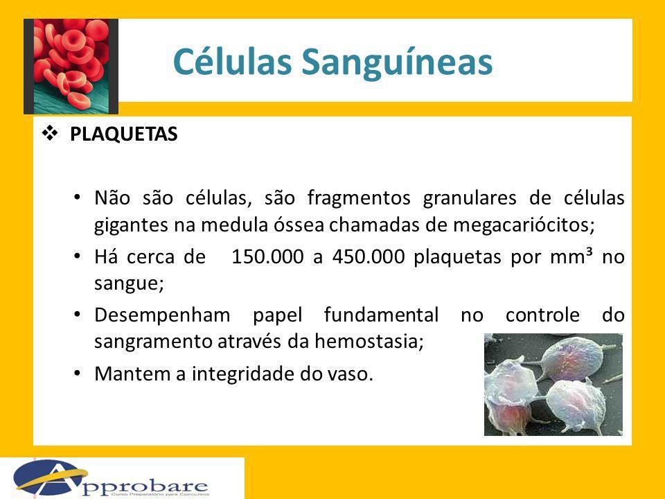 Células Sanguíneas PLAQUETAS Não são células, são fragmentos granulares de células gigantes na medula óssea chamadas de megacariócitos; Há cerca de 15