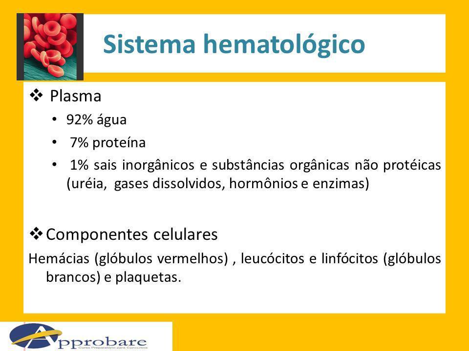 Sistema hematológico Plasma 92% água 7% proteína 1% sais inorgânicos e substâncias orgânicas não protéicas (uréia, gases dissolvidos, hormônios e enzi