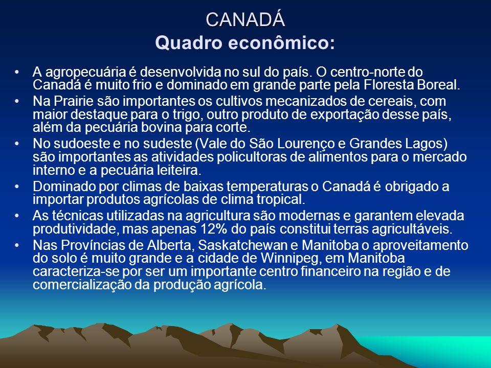 A agropecuária é desenvolvida no sul do país. O centro-norte do Canadá é muito frio e dominado em grande parte pela Floresta Boreal. Na Prairie são im