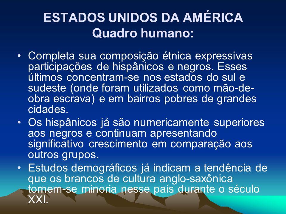 Completa sua composição étnica expressivas participações de hispânicos e negros. Esses últimos concentram-se nos estados do sul e sudeste (onde foram