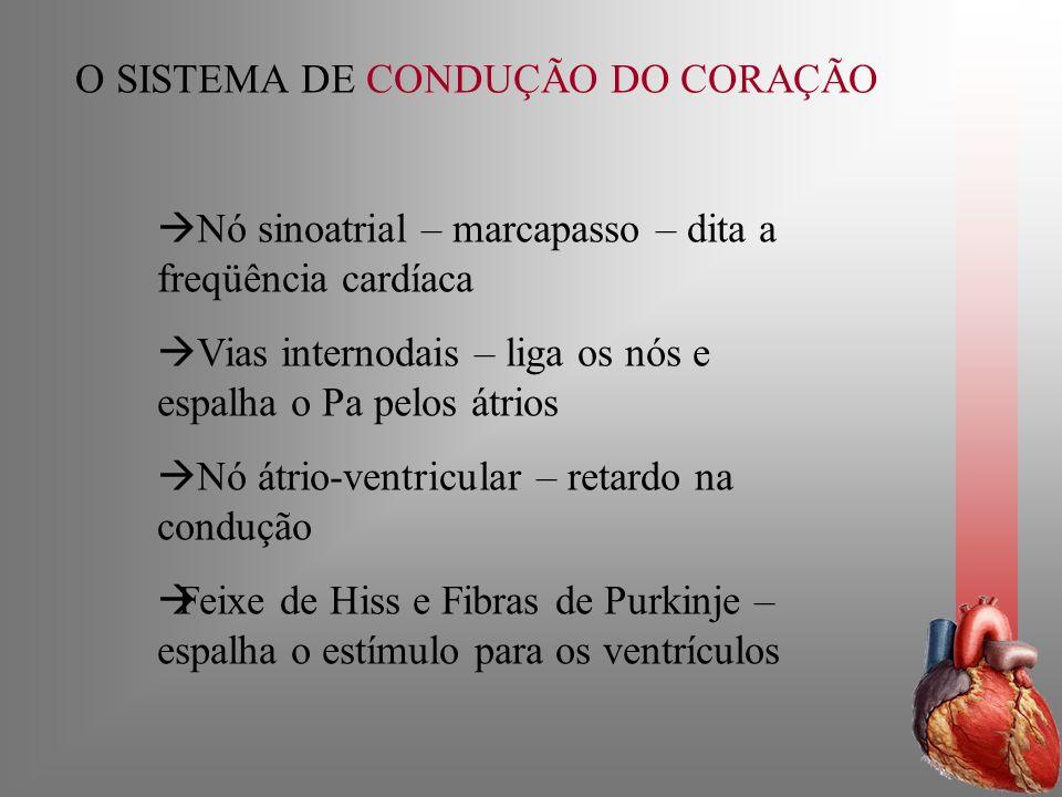 O SISTEMA DE CONDUÇÃO DO CORAÇÃO Nó sinoatrial – marcapasso – dita a freqüência cardíaca Vias internodais – liga os nós e espalha o Pa pelos átrios Nó
