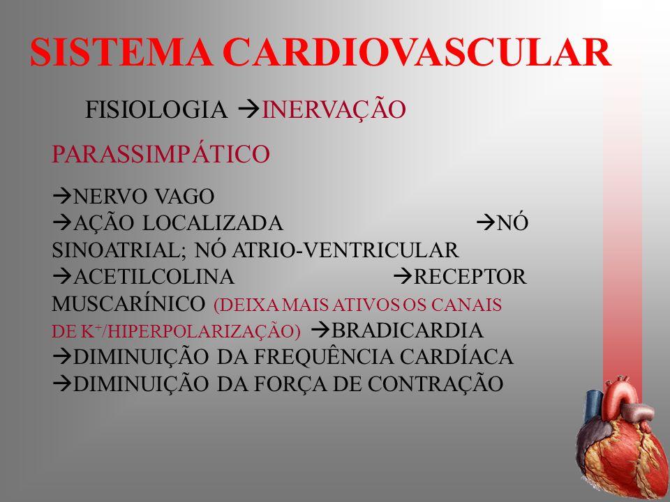 SISTEMA CARDIOVASCULAR FISIOLOGIA INERVAÇÃO PARASSIMPÁTICO NERVO VAGO AÇÃO LOCALIZADA NÓ SINOATRIAL; NÓ ATRIO-VENTRICULAR ACETILCOLINA RECEPTOR MUSCAR