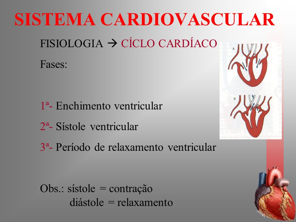 SISTEMA CARDIOVASCULAR FISIOLOGIA CÍCLO CARDÍACO Fases: 1ª- Enchimento ventricular 2ª- Sístole ventricular 3ª- Período de relaxamento ventricular Obs.